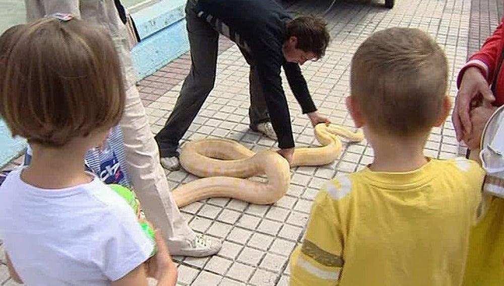 Zoo Urbano en Ortuella