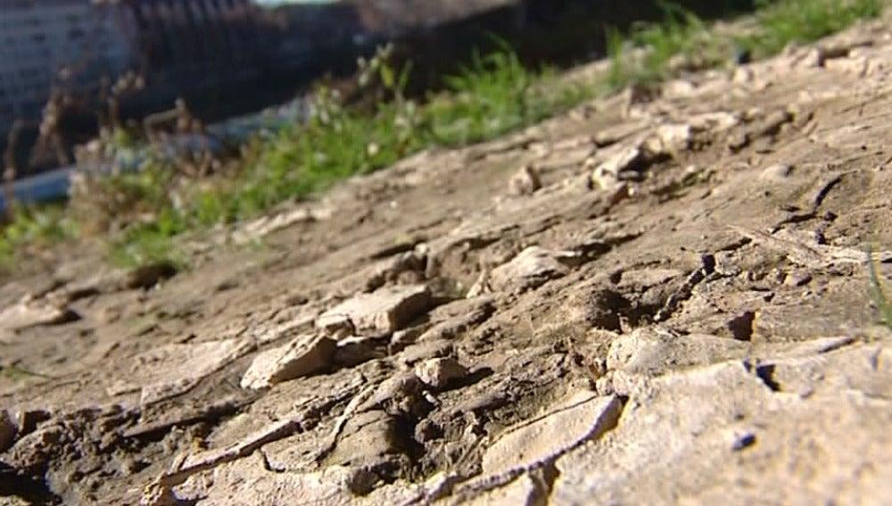 Tierra en sequía