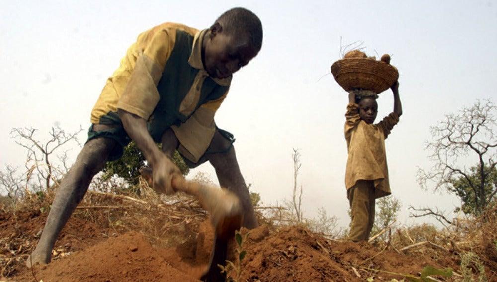 Imagen de archivo de dos niños trabajando en el campo en Nigeria.