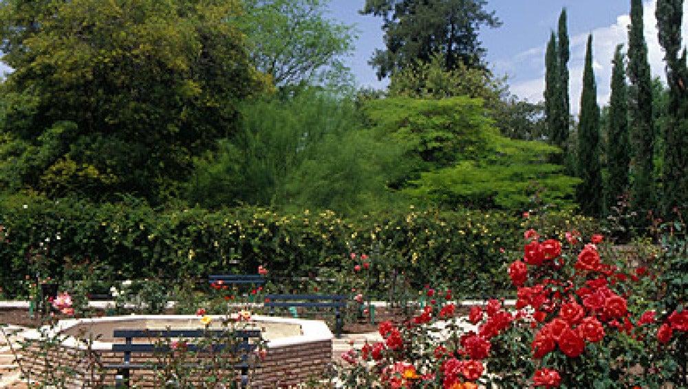 Real Jardín Botánico de Córdoba