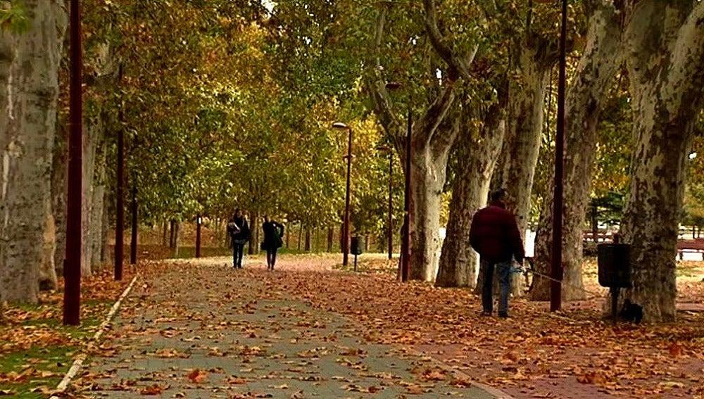Paisaje propio de otoño