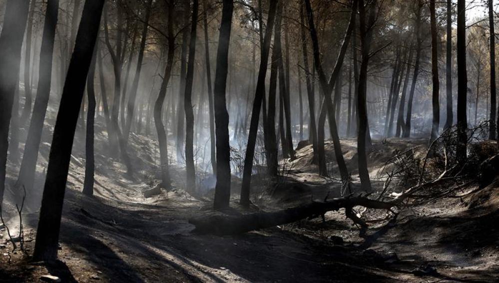 Incendio en Valencia