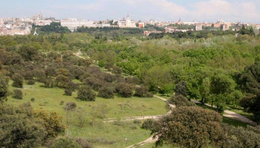 Prisión de 138 años un violador que actuaba en la Casa de Campo de Madrid