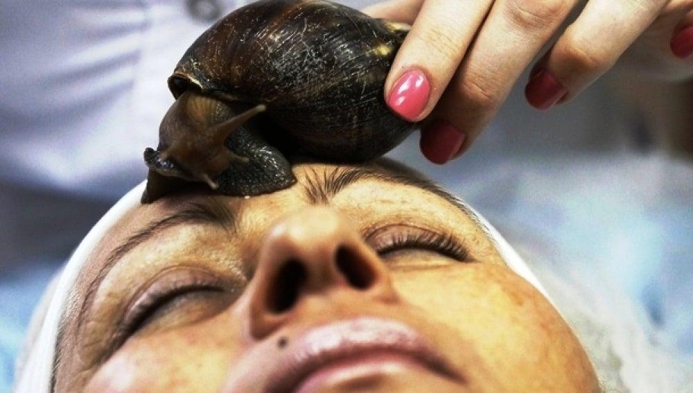 La baba de caracol regenera la piel