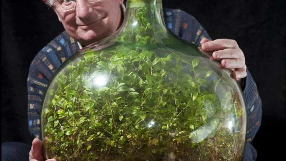David Latimer con su planta