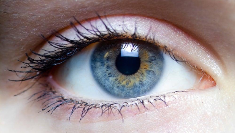 Descubren nuevos genes para identificar la miopía