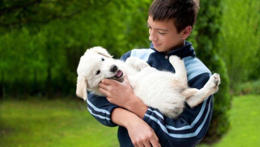 Los animales fomentan las conductas sociales en los niños autistas
