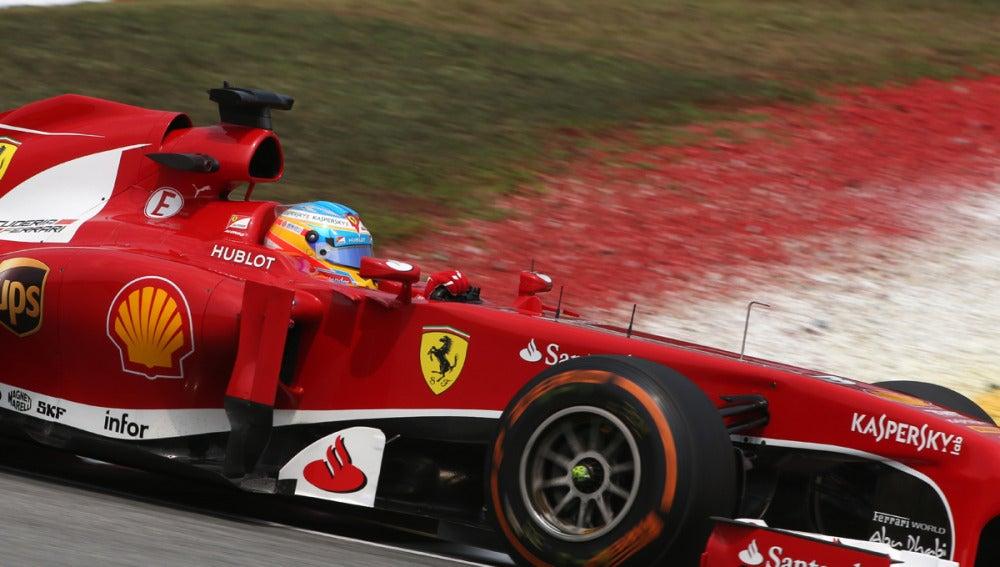 El lateral del F138 de Alonso