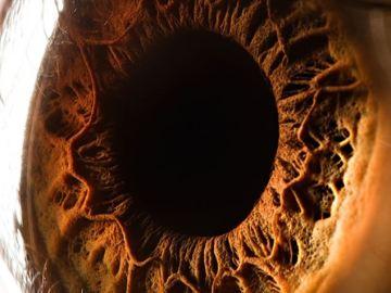El ojo del ser humano, profundo e intenso