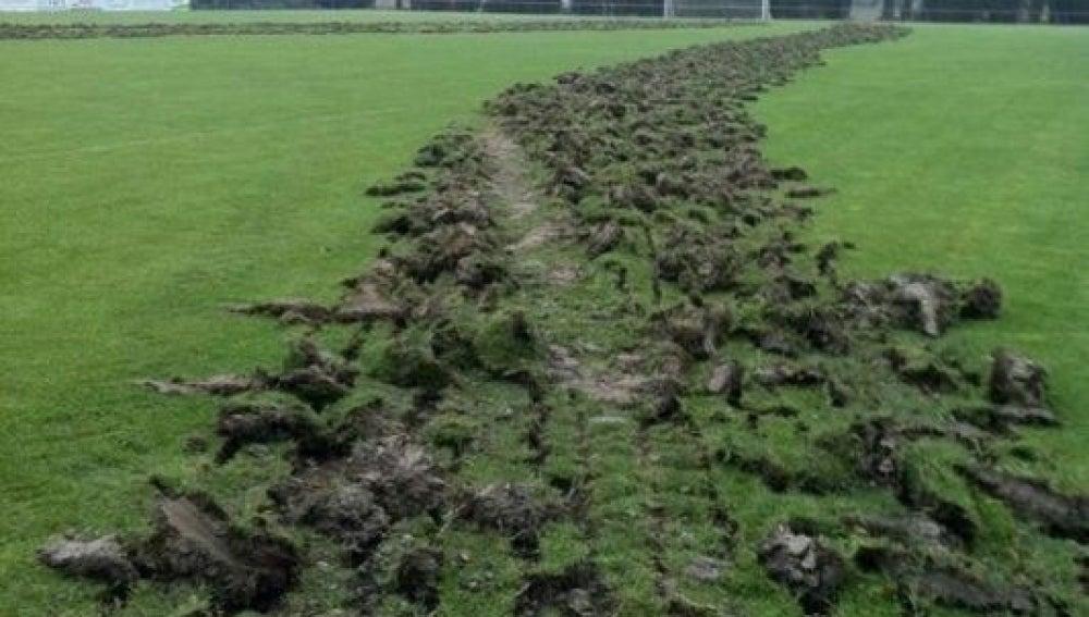 Unos desconocidos destrozan con un tractor el campo de fútbol del Tardienta