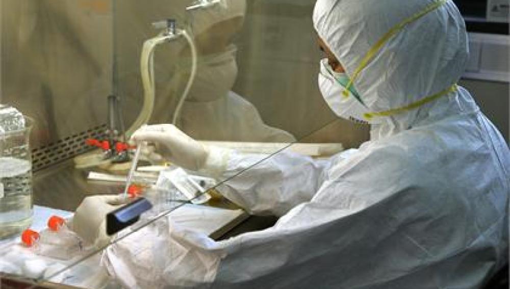 Investigadores diseñan bacterias productoras de electricidad