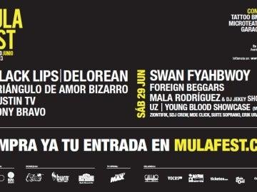 Cartel del Mulafest 2013