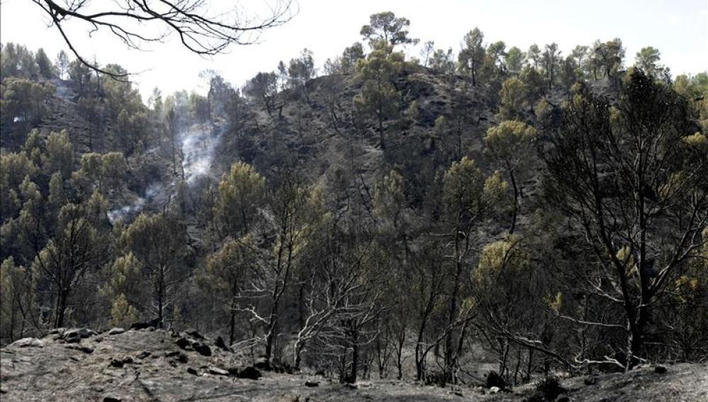 Incendio forestal en Valdemorillo