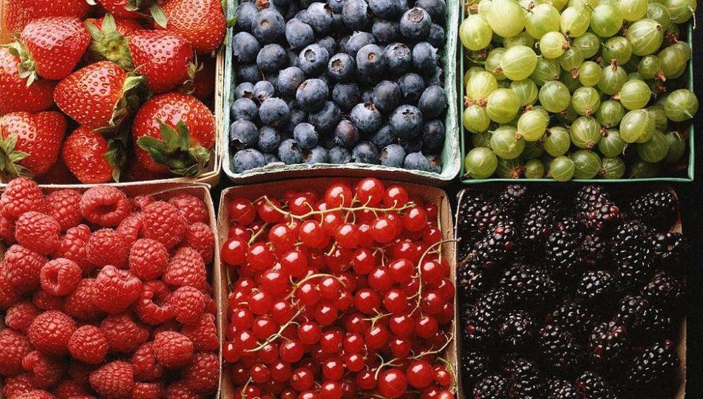Frutas y frutos.