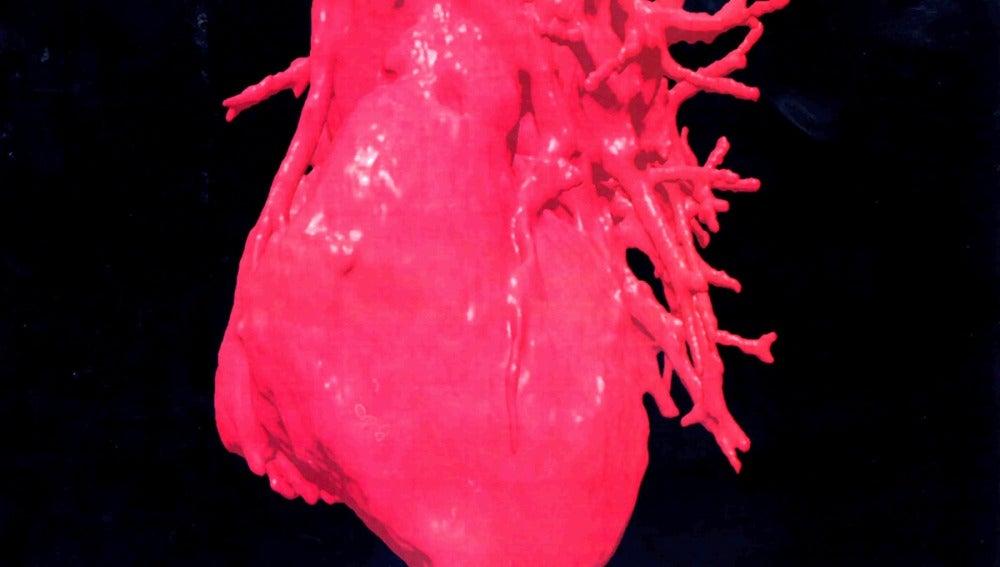 Corazón humano en 3D