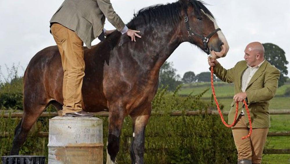 Tratando de subir al caballo