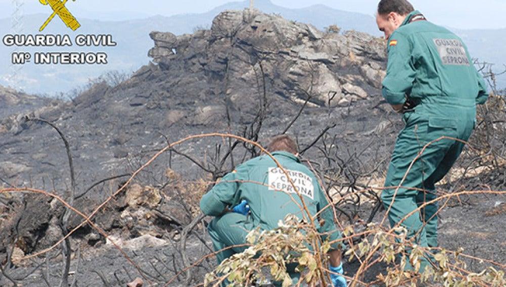 Agentes del Seprona en uno de los incendios de Pontevedra