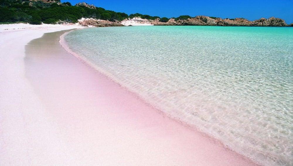 Playa con la famosa arena rosa en la isla de Budelli