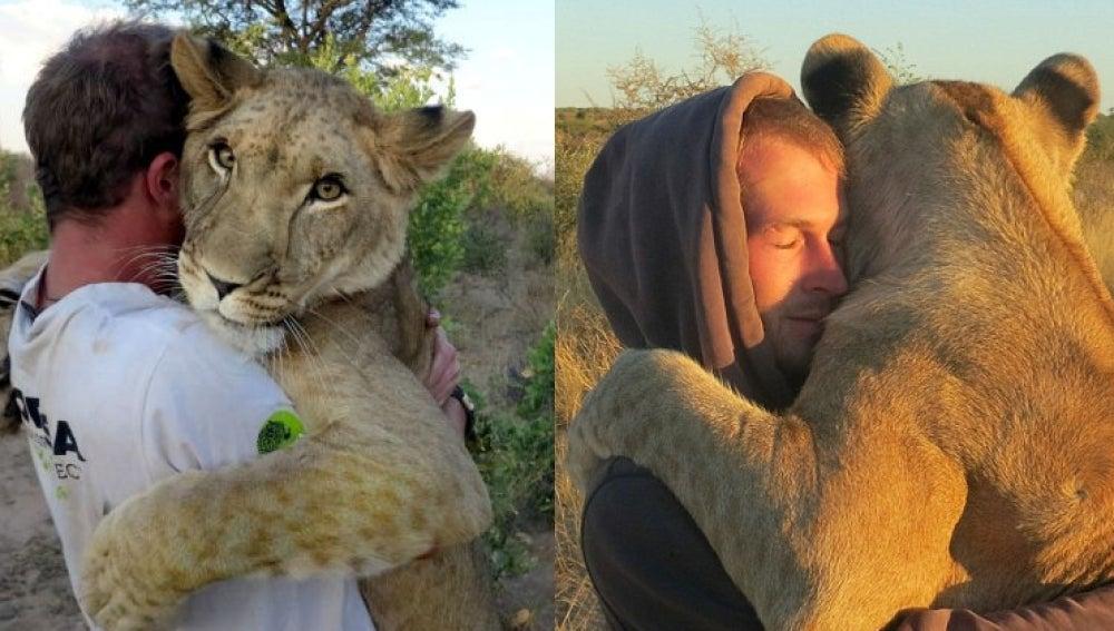 Abrazando a la leona Sirga