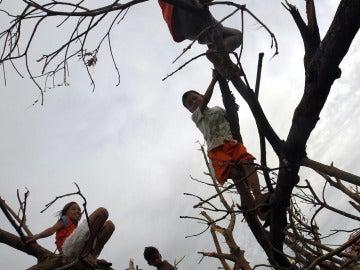Secuelas del Tifón Haiyan (20-11-2013)