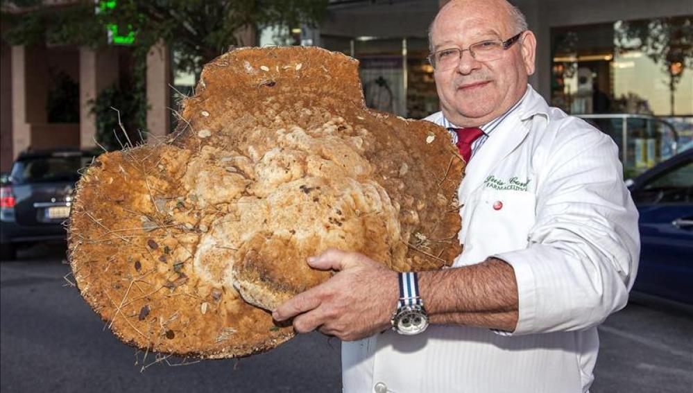Luis Conde y su seta de 12 kilos