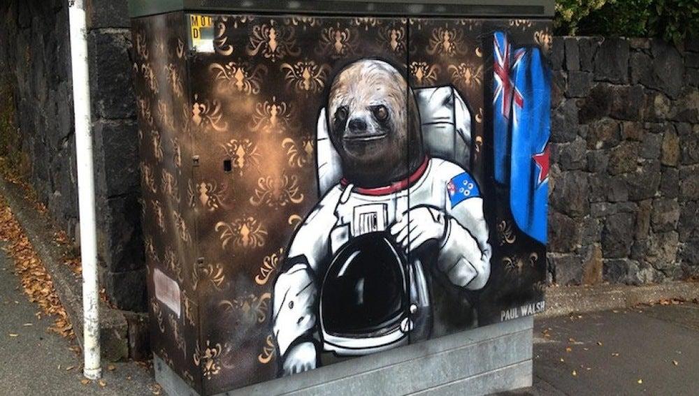 El oso astronauta