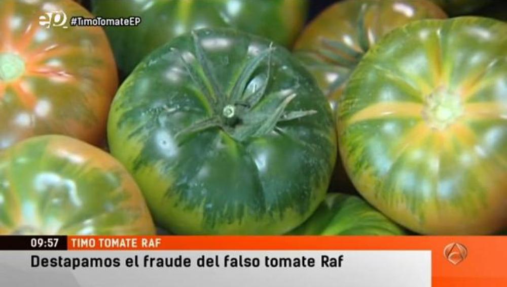 como distinguir el tomate raf