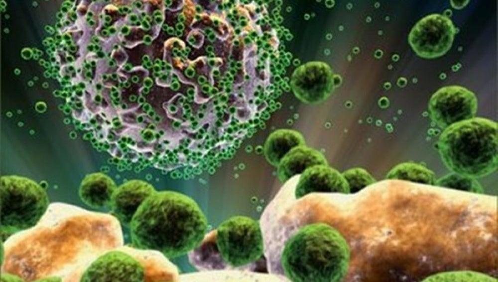 Científios estadounidenses hallan en un hombre con lupus y cáncer la posible clave contra el VIH