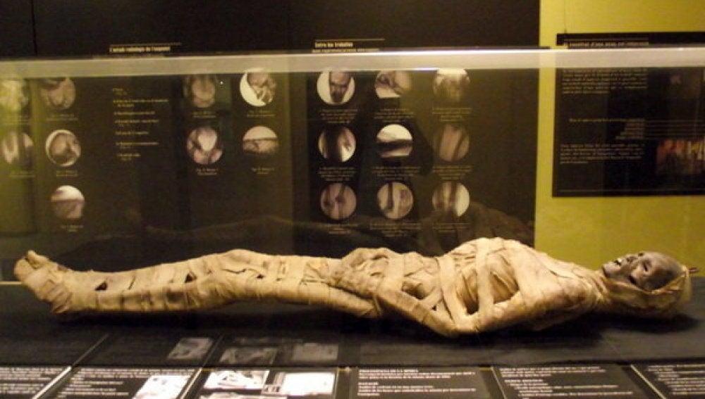 La momia en el Museo Darder de Banyoles