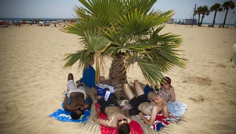 FIbers tomando el sol en la playa