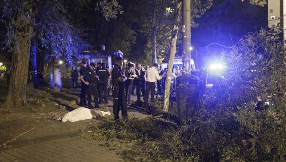 Muere un hombre tras caerle una rama en Madrid.
