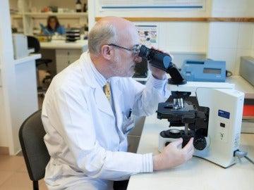 Un gen clave en el Alzheimer