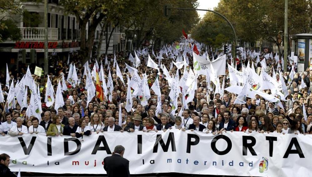 Manifestación 'pro vida' en Madrid.