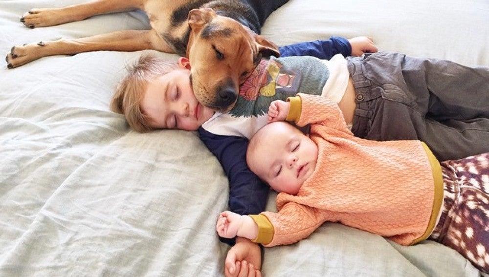 Nada como una buena siesta