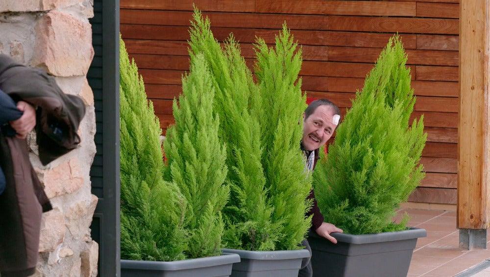 Lolo 'plantando un pino'