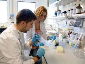Descubren . las instrucciones del genoma para generar células de páncreas
