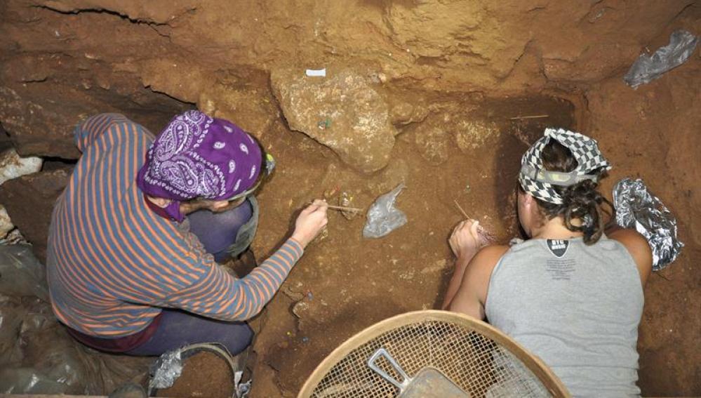 Hallan una mandíbula y un húmero de un niño neandertal