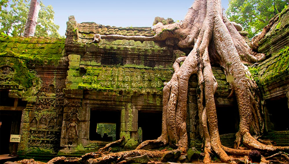 El famoso templo Ta Phrom, en Camboya.
