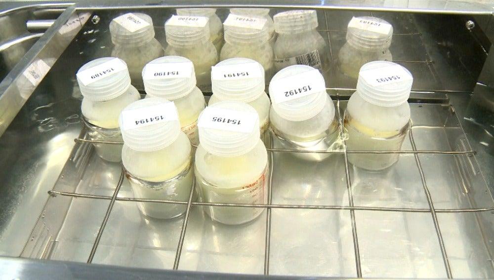 Los bancos de leche, un gesto de generosidad en España y un negocio en otros países