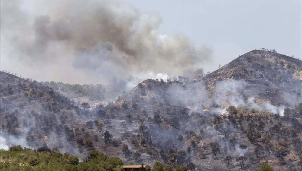 Incendio del Garruchal, en Murcia