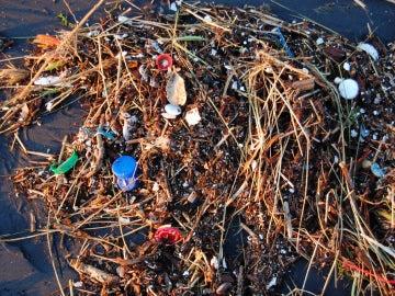 ¿Puede limpiarse el océano de plástico?
