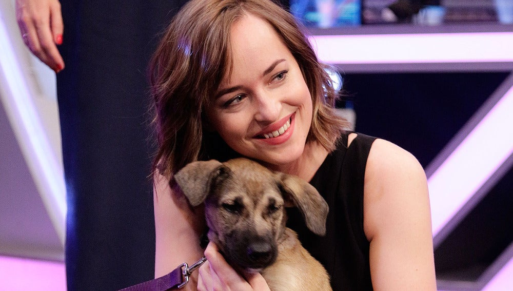 Dakota Johnson en El Hormiguero 3.0