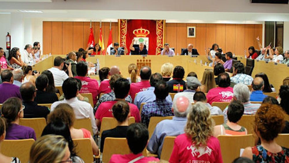 Pleno en el Ayuntamiento de San Sebastián de los Reyes