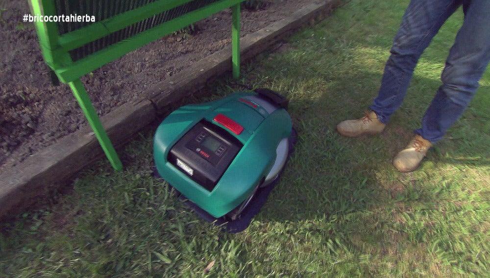 ¿Cómo mantener  el césped de tu jardín perfectamente cortado?