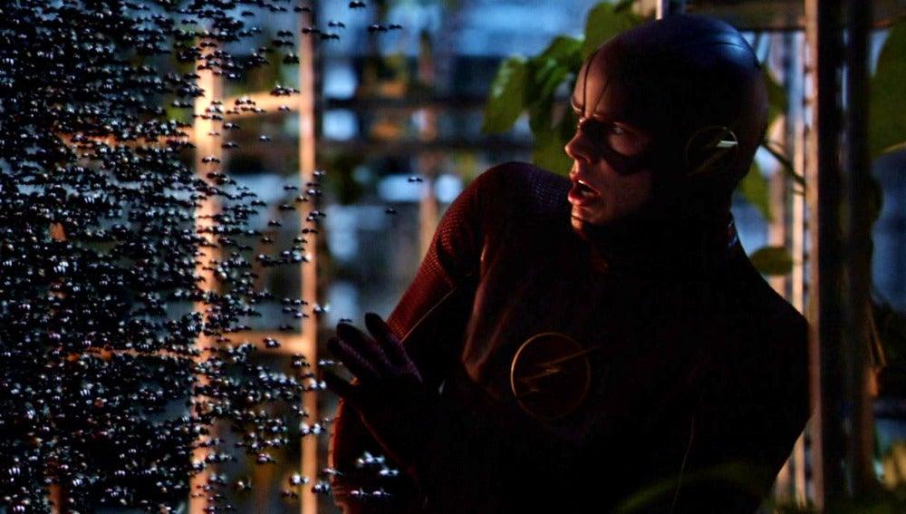 The Flash y ATOM unen sus fuerzas contra Brie Larvin