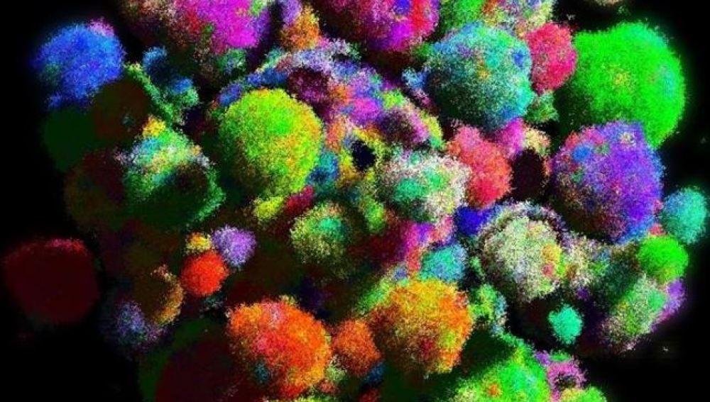 La evolución del cáncer en 3D