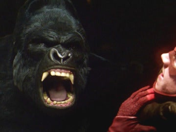 Wells libera a Grodd para distraer a Barry