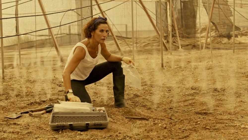 Marta será atacada en los invernaderos