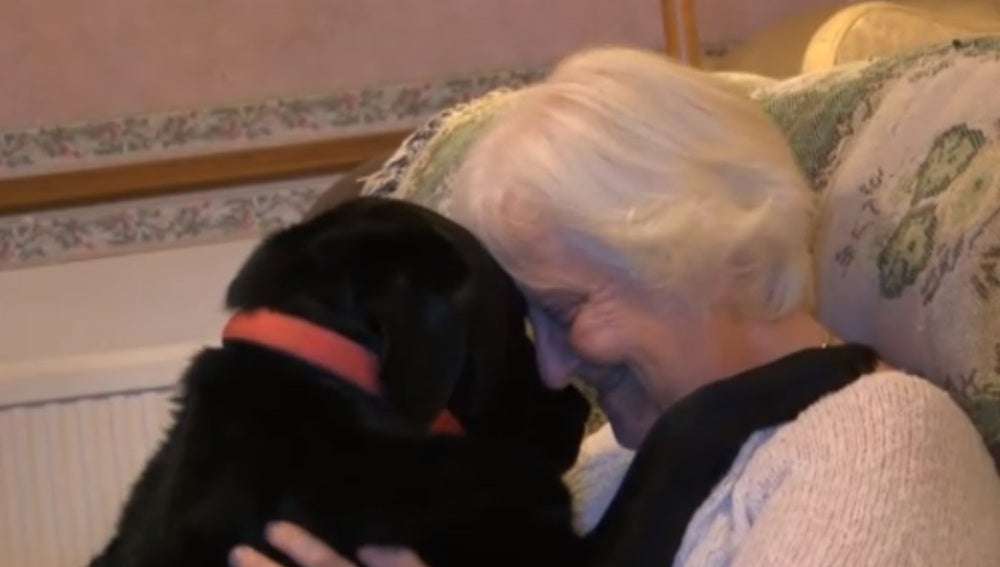 Karin Gibson junto a Paddy, su labrador