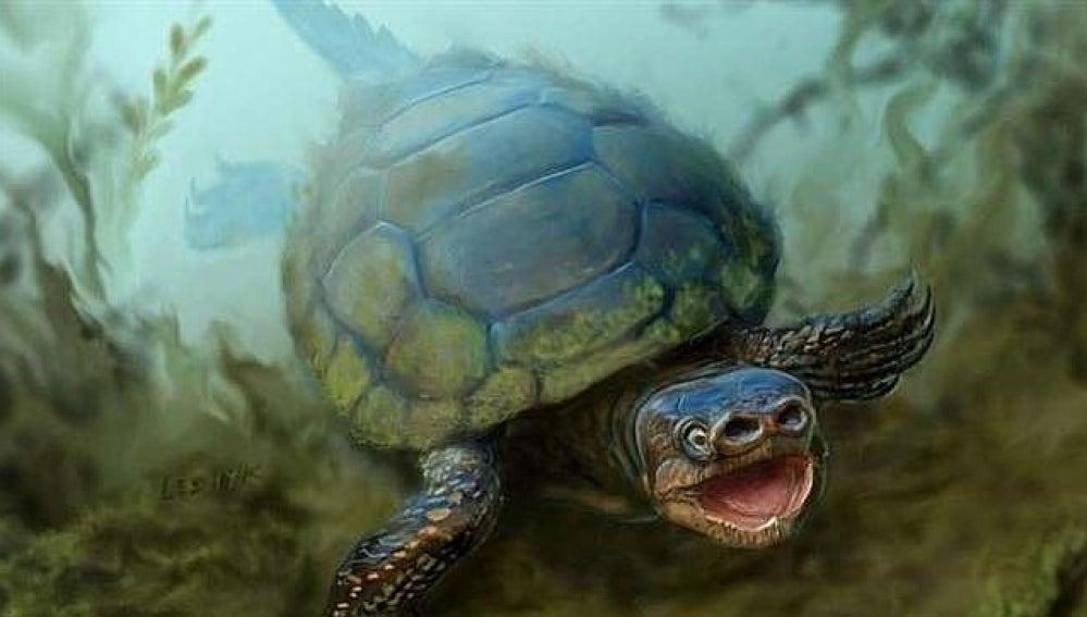 Recreación de tortuga con nariz de cerdo.